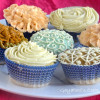 Decorating Cupcakes-1