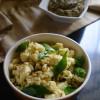 Paneer Kara Pongal - Easy Paleo Recipes