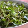 Ponnanganni Keerai/ Water Amarnath Leaves