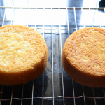 Best Eggless Vanilla Cake Perfect To Use With Fresh Cream ( Oil Based)